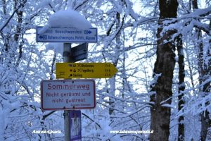 Il percorso (innevato) per arrivare al castello di Neuschwanstein