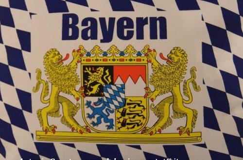 """Emergenza sanitaria """"Covid.19"""" in Baviera: 2° aggiornamento (agosto 2020)"""